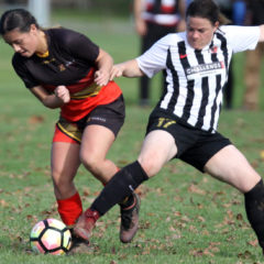 Swifts and Ladies eke out results as injuries bite