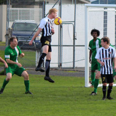 Swifts in seventh heaven