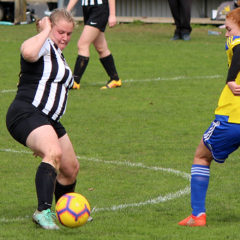 Swifts held while Ladies suffer injury heartbreak