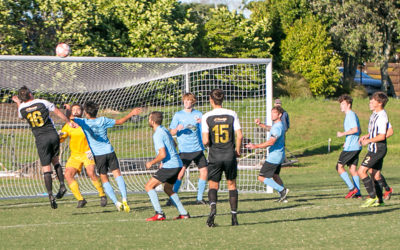 Swifts rebound with important win